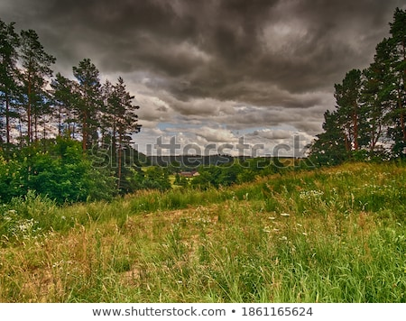 Ernte · Zeit · Sommer · Landschaft · Sturm · schwierig - stock foto © capturelight