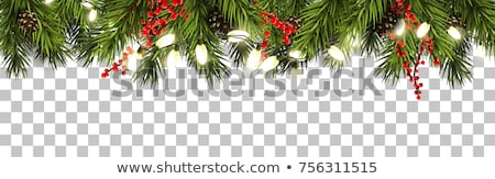 christmas light with fir branches stock photo © -baks-