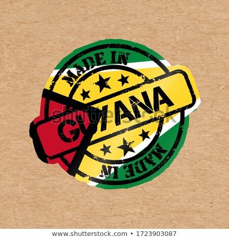 Guyana vidék zászló térkép forma szöveg Stock fotó © tony4urban