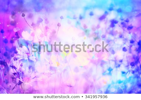 Dromerig mooie bokeh lichten textuur Stockfoto © Julietphotography