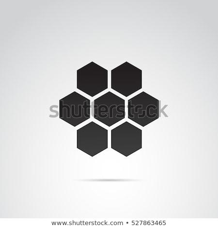 Méz fésű ikon illusztráció terv étel Stock fotó © kiddaikiddee
