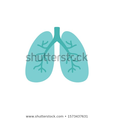 Doodle Lungs Iconon  Stock photo © pakete