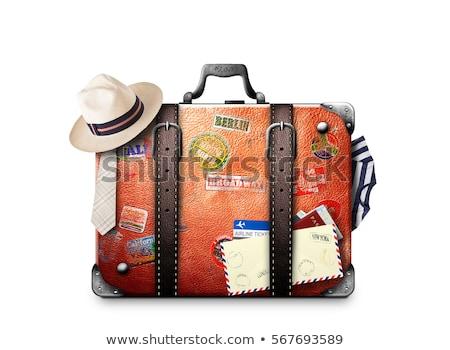 Barna bőrönd utazás térkép világ földgömb Stock fotó © compuinfoto