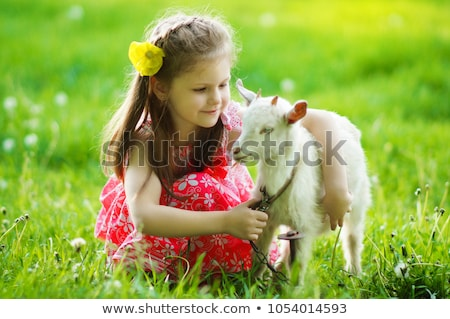 Kids playing with farm animals in field Stock photo © bluering