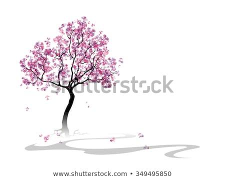 virágzó · ág · sakura · eps · 10 · japán - stock fotó © beholdereye