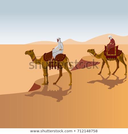 Kettő arab férfiak tevék illusztráció természet Stock fotó © bluering