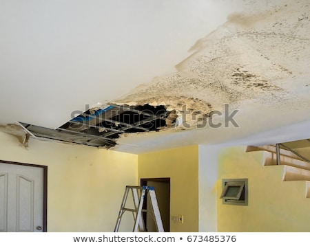 Worker fixing hole in damaged wall Stock photo © simazoran