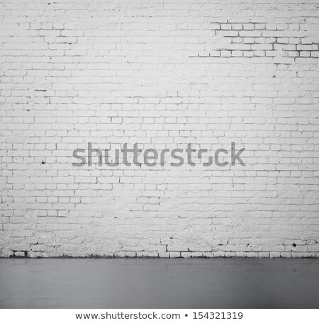 Idea on White Brick Wall. Stock photo © tashatuvango