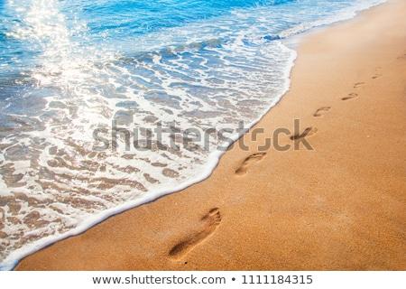 pegadas · praia · natureza · fundo · verão - foto stock © is2