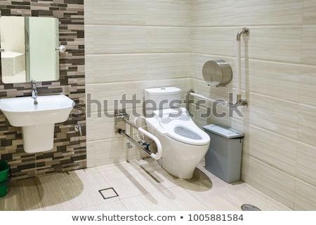 Woman in bathroom on toilet seat Stock photo © stevanovicigor