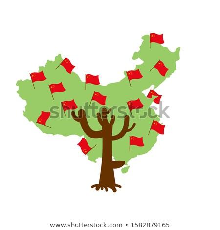 愛国的な ツリー 中国 地図 中国語 フラグ ストックフォト © popaukropa
