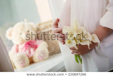 nu · grávida · feminino · foto · nu · mulher · grávida - foto stock © pressmaster