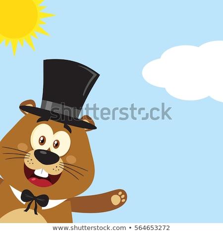 Mutlu karikatür maskot karakter silindir şapka Stok fotoğraf © hittoon