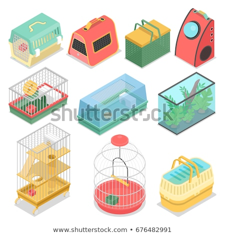 cat isometrics set home pet 3d vector illustration stock photo © popaukropa