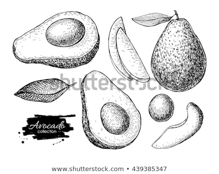 Avocat tranches blanche vert nature fruits Photo stock © ConceptCafe