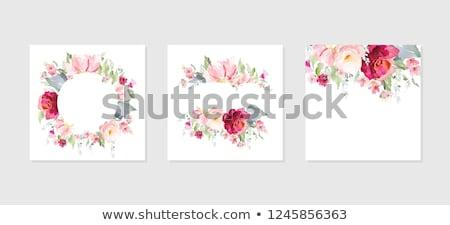 vektor · klasszikus · virágmintás · szalag · kert · rózsa - stock fotó © PurpleBird