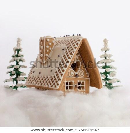 iki · kış · ev · kapalı · kar · Noel - stok fotoğraf © IvanDubovik