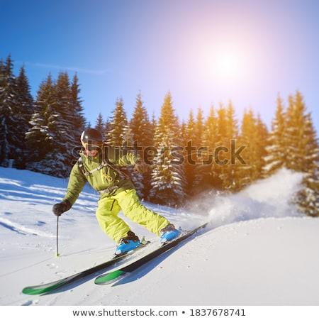 лыжник мужчины лес молодые деревья Поп-арт Сток-фото © studiostoks