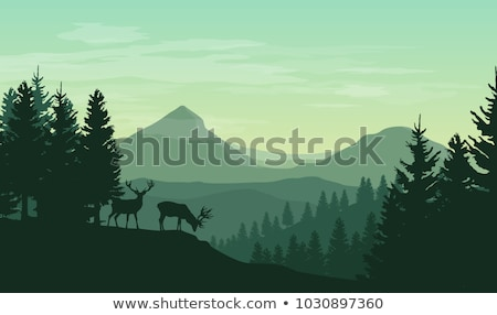 Silhouette Deer and Forest Scene stock photo © colematt