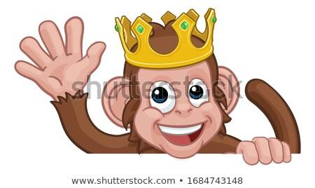 monkey cartoon animal behind sign waving stock photo © krisdog