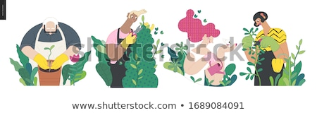 Stock photo: People Cutting Bush with Gardening Scissors Vector