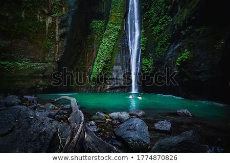 バリ フィジー 滝 滝 インドネシア アジア ストックフォト © galitskaya