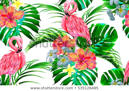 Pattern of monstera leaves, flamingo, flowers hibiscus flower  Stock photo © Margolana
