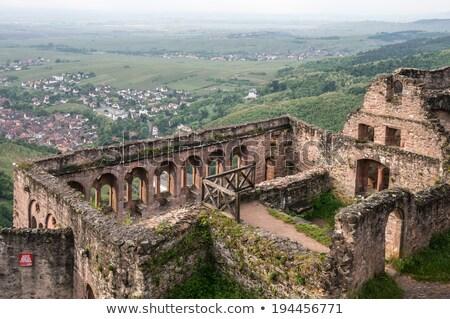 romok · kastély · Franciaország · épületek · építészet · szabadtér - stock fotó © phbcz
