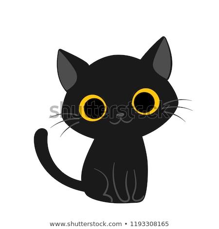 black cat toy stock photo © sahua