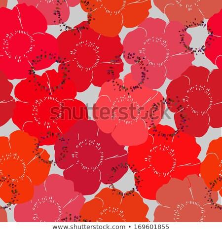 Tango czerwone kwiaty zdjęcie taniec para świadczonych Zdjęcia stock © dolgachov