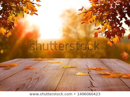 Kırmızı yaprakları ahşap masa ıslak sonbahar düşmek Stok fotoğraf © Arrxxx