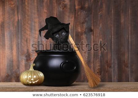 Halloween fekete üst fehér fém forró Stock fotó © saje