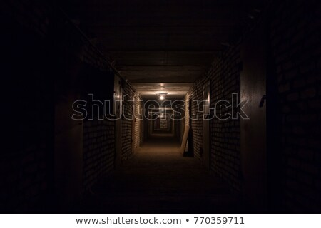 Porta buio seminterrato concrete Foto d'archivio © sirylok