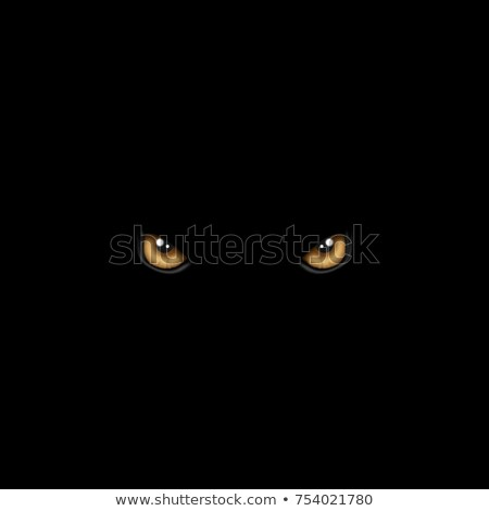 dark wild cat Stock photo © vectorArta