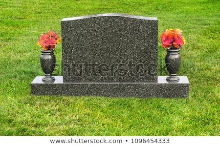 oude · begraafplaats · land · begraafplaats · gras - stockfoto © hofmeester