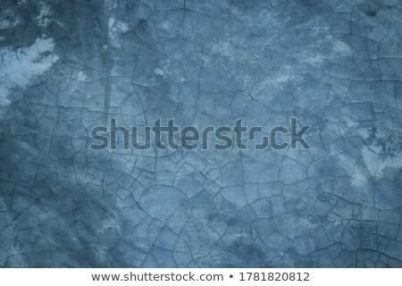 Blu antichi vecchio wallpaper stile retrò pattern Foto d'archivio © Lightsource