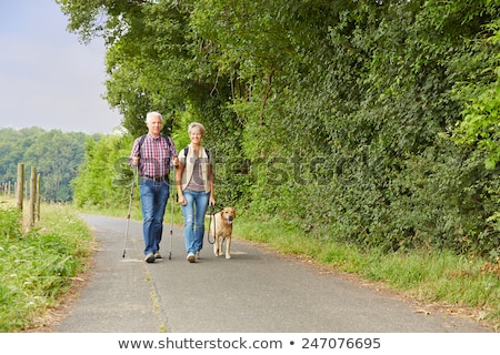 Active Senior Woman with walking stick and dog Stock photo © Pasiphae