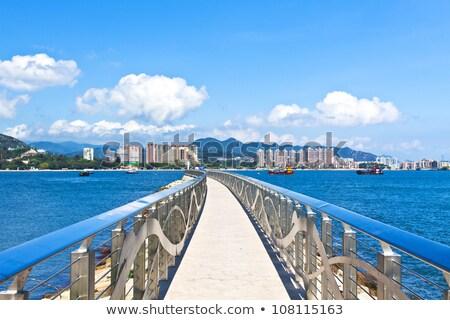 puesta · de · sol · costa · Hong · Kong · árbol · paisaje · mar - foto stock © kawing921