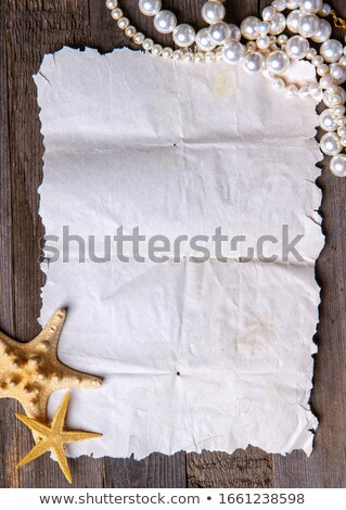 Blank paper scroll on tropical background with seashell and pearls, vector illustration Stock photo © carodi