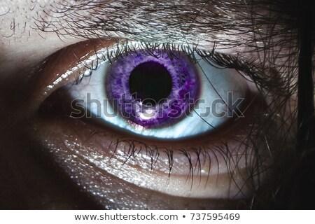 Purple глаза Iris подробный Сток-фото © ArenaCreative