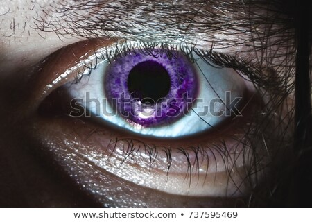 Purple Eye Iris Stock photo © ArenaCreative