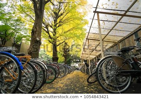 fiets · parkeren · stad · abstract · zomer · teken - stockfoto © nailiaschwarz