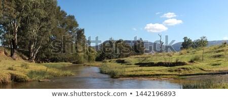 Nehir çiftlik yerli arazi Stok fotoğraf © rghenry