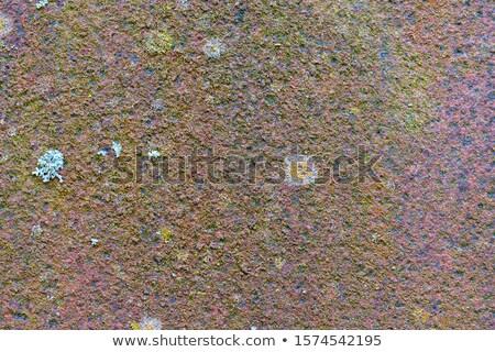 narancs · rozsda · fém · felület · textúra · viharvert · tábla - stock fotó © taviphoto