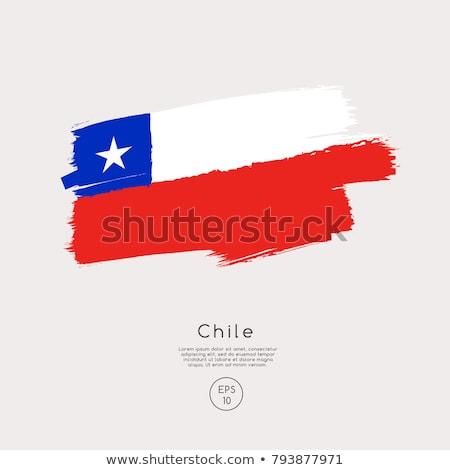Zászló Chile témák ötlet terv fehér Stock fotó © kiddaikiddee