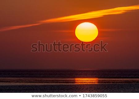 shallow at dutch wadden sea stock photo © ivonnewierink