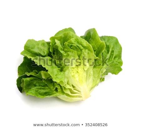頭 ぱりぱり レタス 新鮮な 緑 孤立した ストックフォト © ozgur