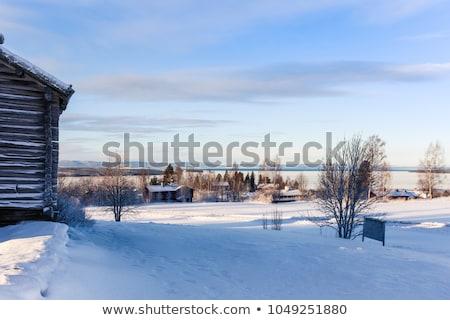 Oude houten schuur alpen Oostenrijk Stockfoto © CaptureLight