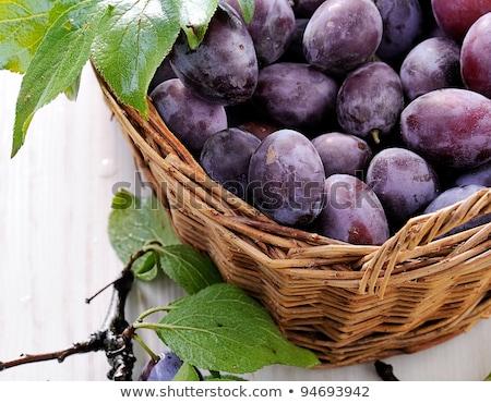 basket of fresh plums stock photo © digifoodstock