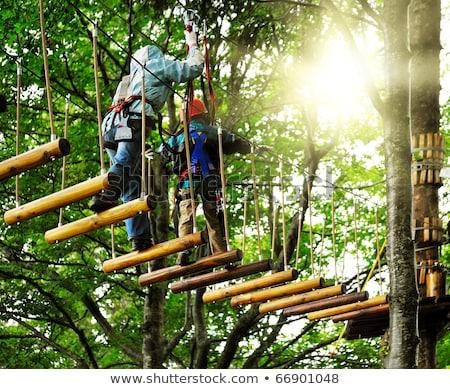 crianças · aventura · parque · crianças · árvores · segurança - foto stock © len44ik